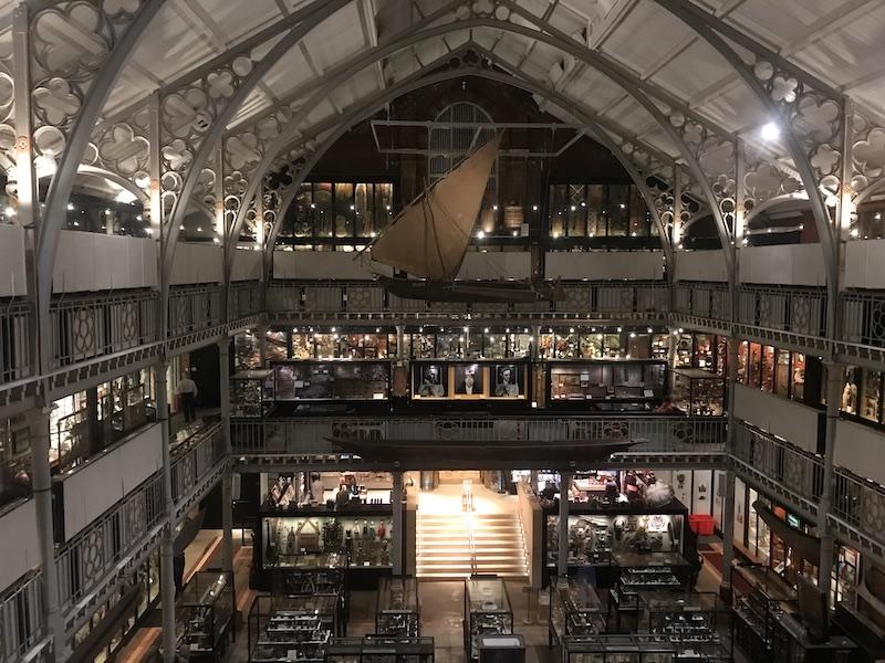 【博物之島新訊】博物館如何面對殖民歷史?牛津大學皮特・里弗斯博物館以展示設計回應