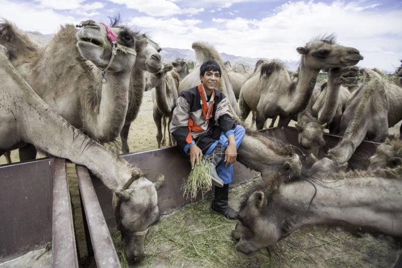佛光緣美術館台南館:2017/12/10-2018/01/14【築夢故鄉─流亡藏人在印度攝影聯展】