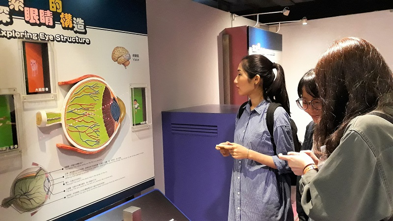 在科教館「情境步道」實境遊戲解謎同時,也能瞭解人類眼睛構造與成像過程。