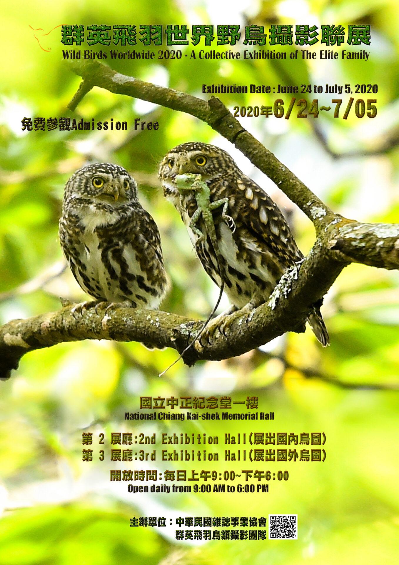 國立中正紀念堂管理處:2020/06/24-07/05【群英飛羽世界野鳥攝影聯展】