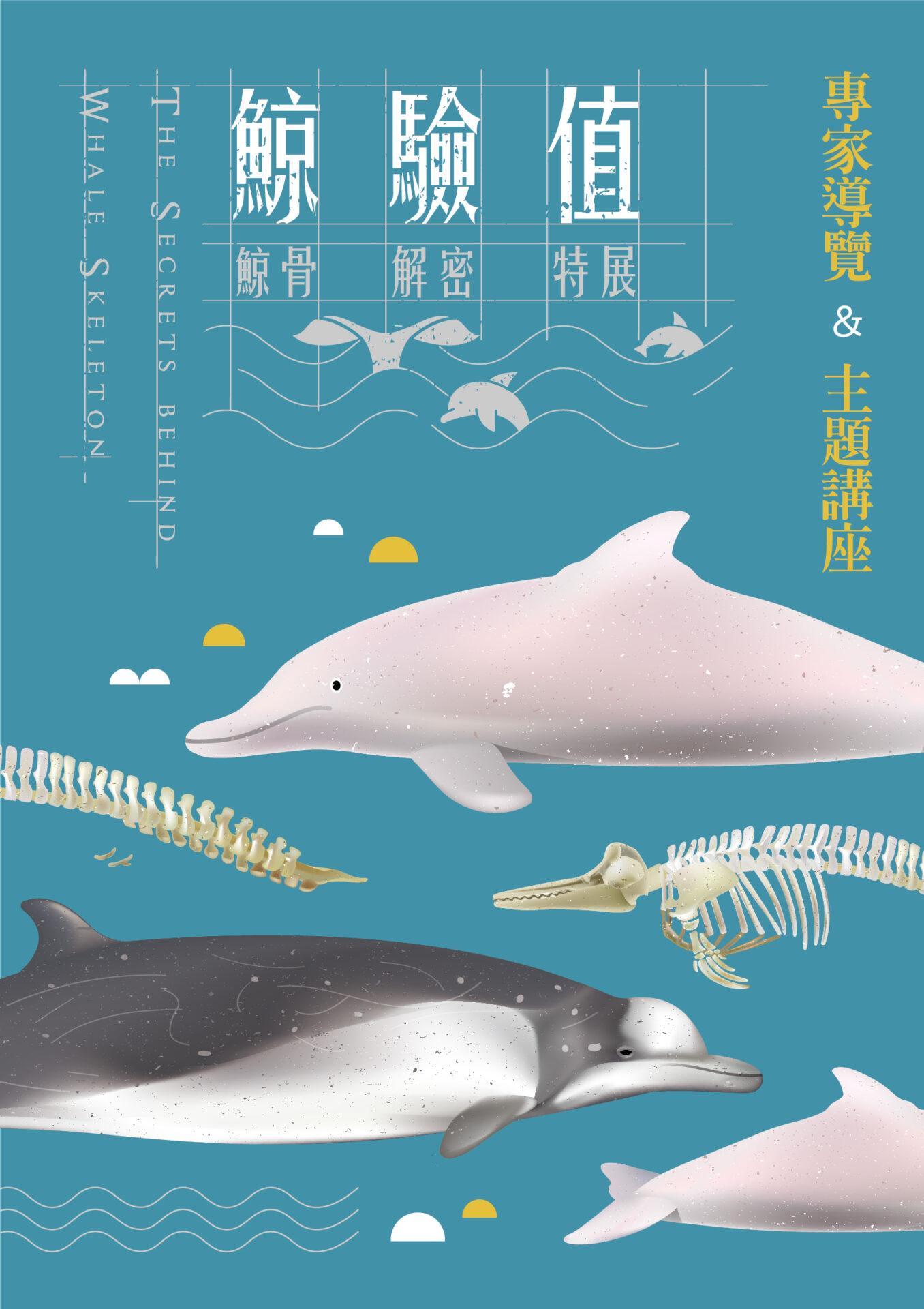 國立臺灣博物館:2021/3/13【「鯨驗值特展」主題講座-骨鯨事:博物館裡的抹香鯨】