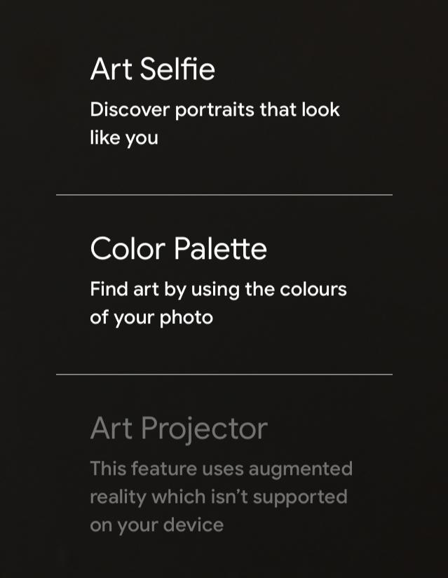 Google Arts and Culture於手機應用程式推出藝術自拍 (Art Selfie) 功能,圖為手機介面。
