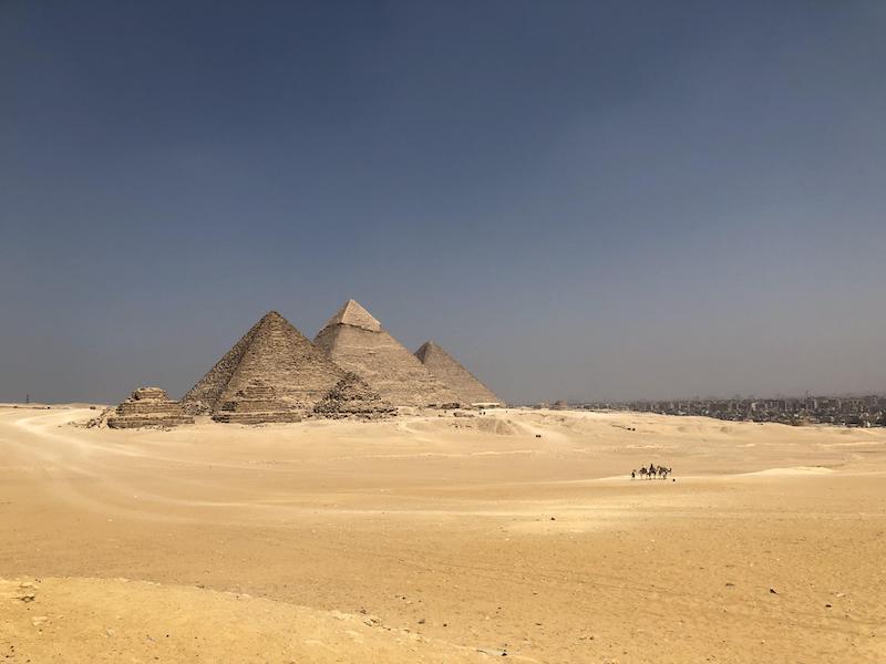 【博物之島新訊】法老黃金遊行的背後—回顧埃及文物保存的過往點滴