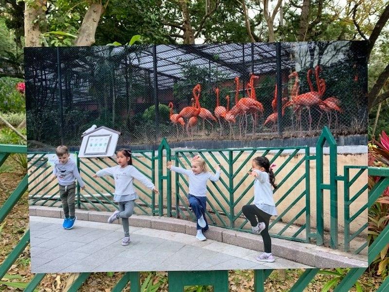 【博物之島新訊】邂逅香港動植物公園—結合自然、歷史與藝術的生態博物館